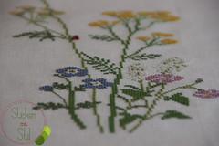 Tischdecke Kreuzstich Kazuko Aoki (StickenMitStil) Tags: flowers lady table cross beetle frog bee stitching aoki frosch biene tischdecke marienkfer kazuko blumenwiese