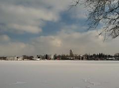 348 : 365 (f l a m i n g o) Tags: park winter lake snow cold amusement colorado denver lakeside freeze friday across project365 365days