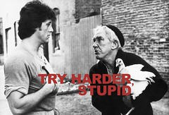 Try harder . . . stupid (divas cafe bar) Tags: boxing rockybalboa tryharderstupid