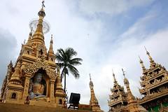 "yangon_020 (ppana) Tags: hti lake"" palace"" ""golden rock"" tan"" pagoda"" an"" ""mrauk u"" yo"" ""buddha ""shwedagon ""buddha"" footprint"" ""victoria"" ""yangon"" ""amarapura"" ""myanmar"" ""burmar"" ""mingalaba"" ""pegu"" ""shwethalyaung"" ""kyaikpun"" reclining"" ""kyaikhtiyo"" ""kyaikpawlaw"" ""shwemawdaw"" ""novice"" ""kanbawzathadi"" ""rangoon"" ""bago"" ""kyaik ""than lyin"" ""hpa ""mawlamyine"" ""kyauk ""pathein"" ""thandwe"" ""ngapali"" ""kalaw"" ""popa"" ""heho"" ""inle ""taunggyi"" ""bagan"" ""sittwe"" ""saggaing"" ""mingun"""