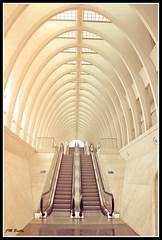 Liege_Gare des Guillemins 30d (Jean Marie Bailly) Tags: station belgium belgique belgie gare calatrava quai lige wallonie guillemins provincedelige