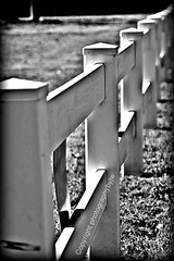 Long White Fence (Photographybyjw) Tags: white black dusty grass fence reflections weeds long paint parking north lot wear foliage dirt worn carolina grime length guarding photographybyjw