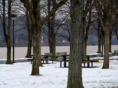 Cross The Way (rcvernors) Tags: trees winter ohio snow cross wv westvirginia oh benches across ohioriver parkbenches harrisriverfrontpark huntingtonwv rcvernors rickchilders crosstheway