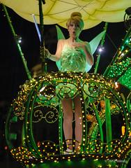 I'm all a-flutter (ddindy) Tags: orlando florida tinkerbell disney disneyworld waltdisneyworld magickingdom mainstreetelectricalparade