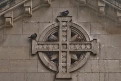 Al Cobijo (Salva Tomatero) Tags: france lluvia palomas francia basilic lisieux colombes