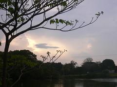 Amenaza llover (Caneckman) Tags: naturaleza primavera sol arboles cielo tabasco