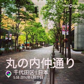 桜庭ななみ 画像4