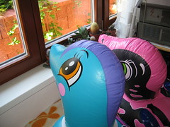 Dolphins (Arambajk) Tags: pool up toy blow collection inflatable float blowup inflatables drak pooltoy hraka nafukovac
