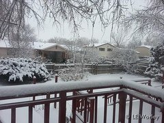 January 16, 2015 - Thornton yards and decks covered in snow.  (LE Worley)
