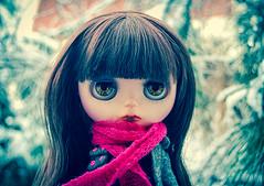 shirley_winter