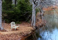 At Bass Pond, Biltmore Estate (goldengirl 2011) Tags: bench peace biltmoreestate ashevillenc basspond ashevillenorthcarolina fredericklawolmstead peacefulnature katharinehanna