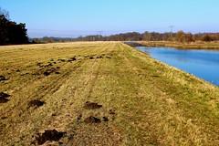 Between somewhere and nowhere (ahmBerlin) Tags: wasser natur kanal brandenburg havelland brieselang zeestow