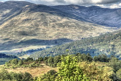 From the Queen Elizabeth forest drive. (dobienet) Tags: scotland forestry hills trossachs