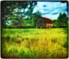 Ozarks barn... (Sherrianne100) Tags: barn rural countryside farm missouri ozarks oldbarn