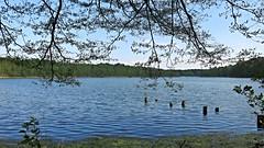 Jezioro Glibiel