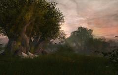 Last sunset (Leonorah Beverly) Tags: secondlife frisland lenabemannaj