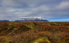 2016 03 ICELAND mountain and grass (AKAMASSI) Tags: winter sky mountain holiday green weather clouds canon landscape iceland exposure dreamscape islande icelandic scandinavie pierremichel lostworldpics pierremichelphotography