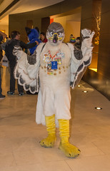 _DSC4235 (Acrufox) Tags: midwest furfest 2015 furry convention december hyatt regency ohare rosemont chicago illinois acrufox fursuit fursuiting mff2015