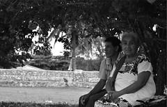 """""""Le k'inilo'obo ma'aun pajtal u k'exbesik tu lakal, ma'jum p'el jajil winik"""" """"El tiempo no puede cambiar todo, no un ser sincero"""" (Giancarlo Artemio Aguilar Che) Tags: blancoynegro mxico plantas maya mirada zona canas quintanaroo seor seora monocromtico tihosuco giancarloaguilar"""