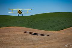 Crop Dusting (tenmenkilled) Tags: blue brown green yellow plane canon airplane us washington unitedstates farm roadtrip shaddow farmland fields 100400mm biplane thornton 6d palouse steptoe