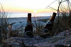 Carlsberg (schauny) Tags: sunset sun beach beer strand denmark sand dune northsea bier dnemark nordsee carlsberg hvidesande bjerregard