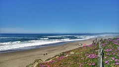 Point Reyes - North Beach (Deven Panchal) Tags: blue day sunny hike pointreyes sunnyday