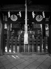 Fox Shrine (RunnyInHongKong) Tags: film japan mediumformat tokyo 6x45 kodaktmax400 nezu mamiya645protl nikoncoolscan9000 mamiyasekor80mmf19 nikonscan41