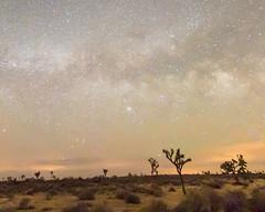 New Moon June 2016 #17 (MarcCooper_1950) Tags: sky skyscape stars landscape outside outdoors nikon scenery moody desert dramatic astrophotography nightsky hdr lightroom milkyway starlight longeposure d810 desertnight marccooper aurorahdr