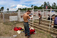 Blythewood Rodeo 2016-19 (Perry B McLeod) Tags: sc cowboys barrel bull racing bulls riding rodeo cowgirl calf saddle bronc blythewood roping ipra