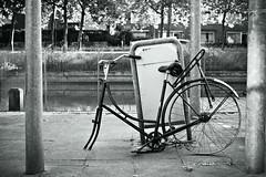 Inge Hoogendoorn (ingehoogendoorn) Tags: blackandwhite bike bicycle trash cycling garbage zwartwit bikes bicycles blacknwhite fietsen fiets vuilnisbak vuilnis afval bikeparking fietswrak dutchbikes fietswrakken
