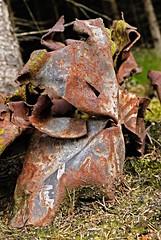 Tanz der rostigen Waldgeister 3 (DianaFE) Tags: rost wald figur blech zufall