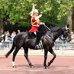 Mounted Band Household Cavalry (NTG's pictures) Tags: the major generals review rehearsal for trooping colour british army household division mounted band blues royals cavalry lifeguards