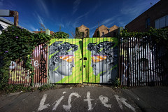 (th3butcherofbilbao) Tags: street art collingwood melbourne ling lister sonya7ii