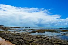 Praia do Forte (Jorge Hamilton) Tags: bahia brasil brazil praia do forte arco ris rainbow lua luar farol beach moolight jorgehamilton brandao brando