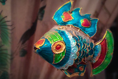(174/366) Fish Out of Water (CarusoPhoto) Tags: iphone 6 plus john caruso carusophoto photo day project 365 366 fish ornament paper umbrella swim swimming colorful everyday mundane banal ordinary