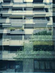 (marc ramoneda) Tags: camera city film pen 35mm polaroid high 28mm olympus double scan negative definition hd halfframe expired 35 mallorca palma multiexposure 100iso ee2 122007 marcramoneda
