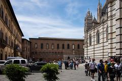 Siena - Cathedral Piazza del Duomo (Le Monde1) Tags: city horses italy nikon cathedral unesco worldheritagesite rivers tuscany siena stmary elsa palio pilgrims piazzadelduomo d610 arbia santamariaassunta merse viafrancigena lemonde1