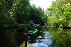 Lake Oolenoy Kayaking-18 (RandomConnections) Tags: us unitedstates southcarolina kayaking paddling pickens pickenscounty lakeoolenoy tablerockstatepark knobhistorical