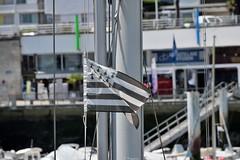 Gwenn Ha Du  Royan (Mystycat =^..^=) Tags: france port harbor flag drapeau royan mt charentemaritime poitoucharentes gwennhadu drapeaubreton