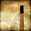 To Dream (jackaloha2) Tags: bridge texture birds clouds photoshop canon wires suspensionbridge stormclouds missouririver pedestrianbridge todream texturedlayers canoneosdigitalrebelxsi bobkerrybridge bestcapturesaoi jackaloha2 photoshopcs5 creativephotocafe vigilantphotographersunite