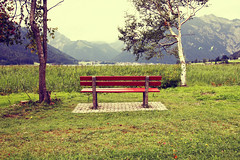 Red Bench (CoolMcFlash) Tags: red summer mountains alps tree green rot nature grass canon vintage bench landscape eos austria tirol sterreich view sommer empty leer natur wiese bank nobody retro berge gras grn alpen aussicht hayfield tamron landschaft bume idyllic tyrol gebirge maurach achensee softtones idyllisch sitzbank niemand 18270 landschaftsaufnahmen 60d b008