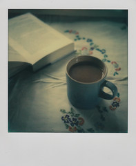 Evening read (L. McG.-E.) Tags: film polaroid sx70 instant analogue px70 impossibleproject colorprotection