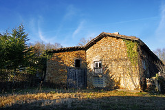 old house in the countryside with creeper plants (Mikel Martnez de Osaba) Tags: wood old light sunlight house plant building abandoned home broken nature architecture rural vintage countryside bush construction ancient exterior antique decay empty ghost rustic ivy dirty haunted spooky foliage growth aged mansion creeper deserted