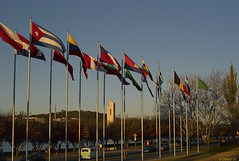 Multiple National Flags by Lake Burley Griffin, Canberra (i-lenticularis) Tags: leica color colour australia rangefinder flags m8 canberra lakeburleygriffin leicam8 contaxg45 rangefinderphotography ccdsensor contaxg45f2