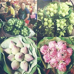 Mobile Uploads (halfmoonexplorer) Tags: flowers flower thailand lotus market bangkok vendor