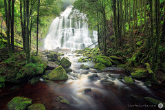 Nelson Falls (Luke Tscharke) Tags: light green water forest river waterfall movement australia nelson tasmania queenstown nelsonfalls