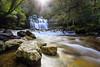 Liffey Falls (Scott Cresswell) Tags: longexposure nature water landscape flow waterfall flickr tasmania liffeyfalls rated canon1740f4lusm hoyandx400 canon5dmarkiii