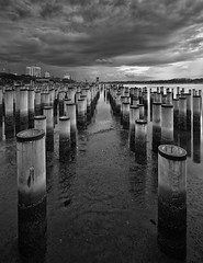 The Social Network (draken413o) Tags: travel abandoned monochrome digital asia long exposure waterfront south east malaysia jb poles causeway blending bahru johore waterscapes destinations vertorama