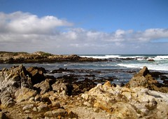 this is california ({{mo.foto}}) Tags: ocean rocks asilomarstatebeach mofoto pacificgrovecalifornia thisiscalifornia moniquerenee