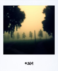 "#DailyPolaroid of 23-9-13 #369 • <a style=""font-size:0.8em;"" href=""http://www.flickr.com/photos/47939785@N05/10050186675/"" target=""_blank"">View on Flickr</a>"